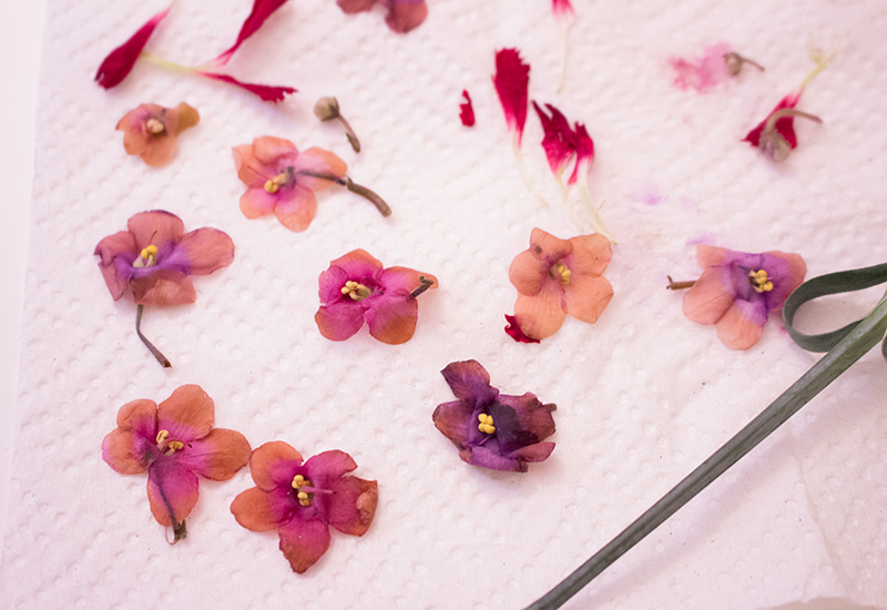how to make temporary tattoos from dried flowers 4